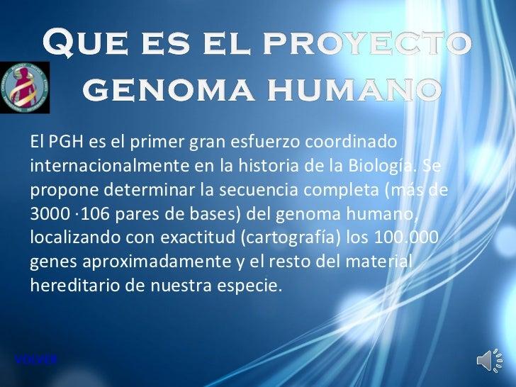 Genoma humano pablo roca y javier p rez for En 2003 se completo la secuenciacion del humano
