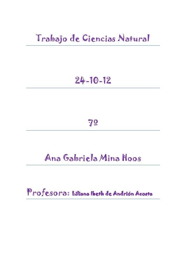 Trabajo de Ciencias Natural                24-10-12                    7º      Ana Gabriela Mina HoosProfesora: Liliana Ib...
