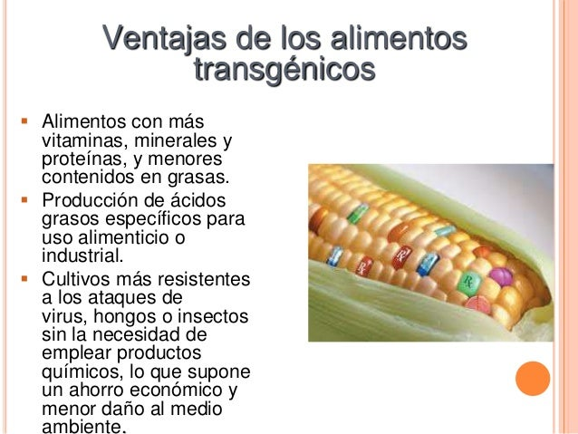 Transg nicos - Ventajas alimentos transgenicos ...