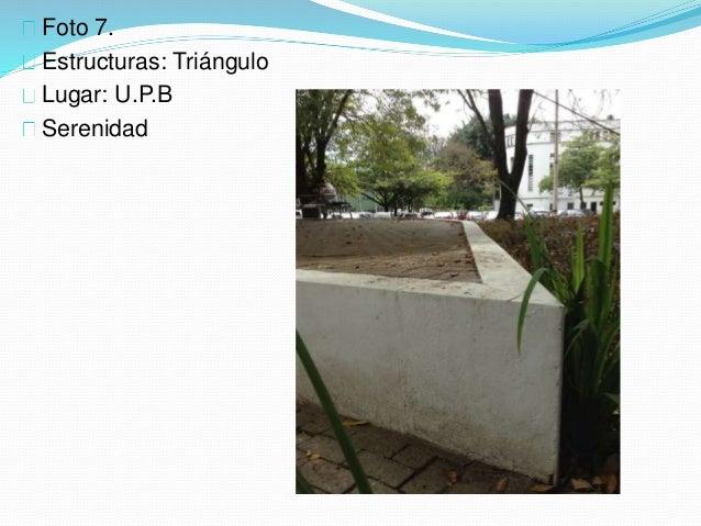 Foto 7. Estructuras: Triángulo Lugar: U.P.B Serenidad