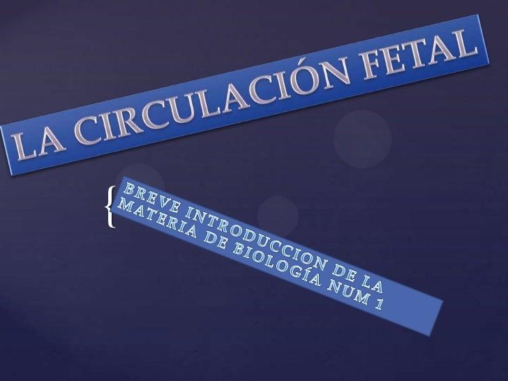LA CIRCULACIÓN FETAL<br />BREVE INTRODUCCION DE LA MATERIA DE BIOLOGÍA NUM 1<br />