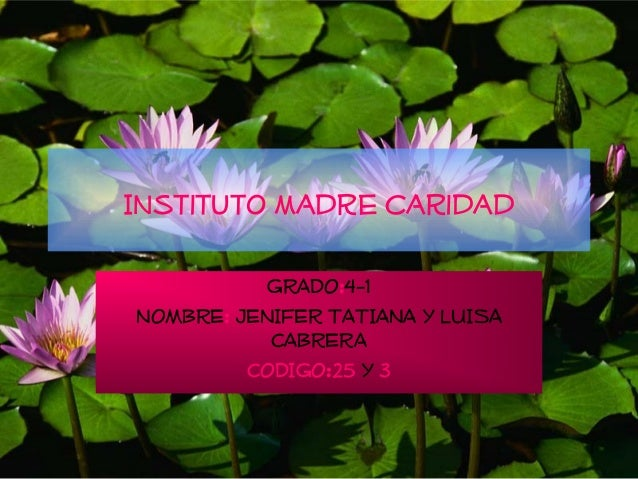 Instituto madre caridad           GRADO:4-1NOMBRE: JENIFER TATIANA Y LUISA           CABRERA         CODIGO:25 Y 3