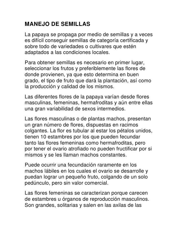 TRABAJO DE  PAPAYA POR BERTA, VIVIANA, LAURA, KEILA, ERICA