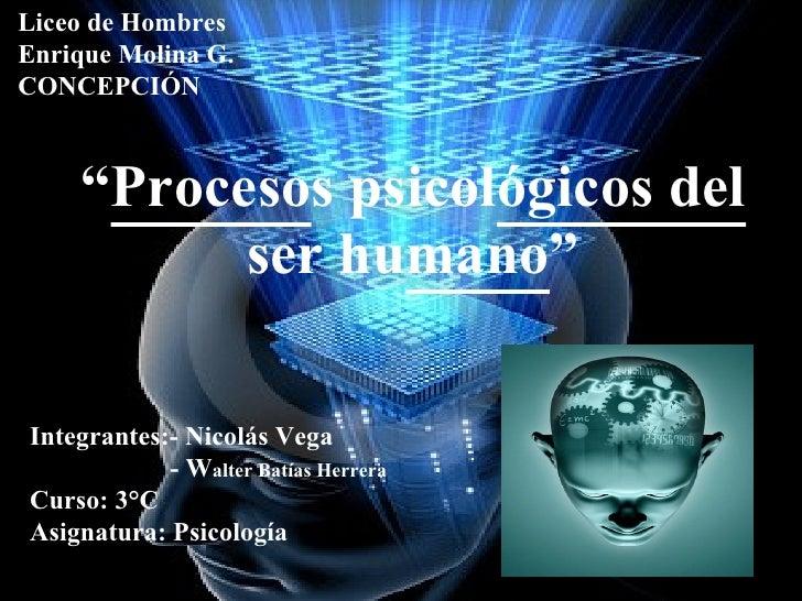 """"""" Proceso s psicol ógicos del  ser hu mano """" Liceo de Hombres  Enrique Molina G. CONCEPCIÓN Integrantes:- Nicolás Vega - W..."""