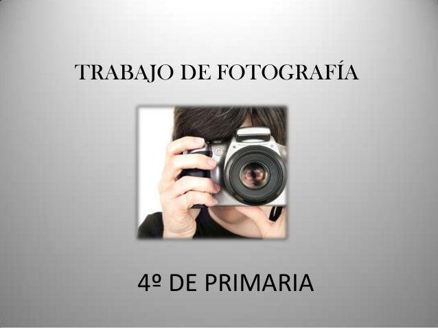 TRABAJO DE FOTOGRAFÍA    4º DE PRIMARIA