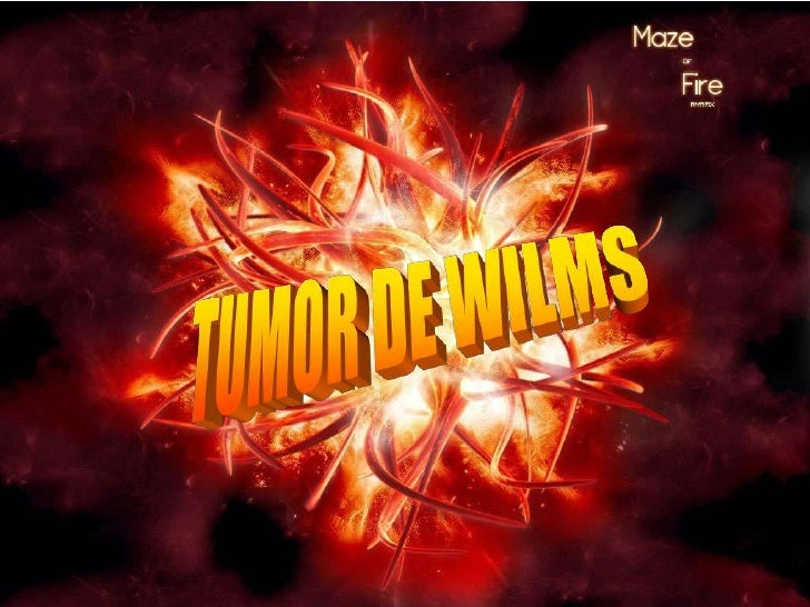 TUMOR DE WILMS<br />
