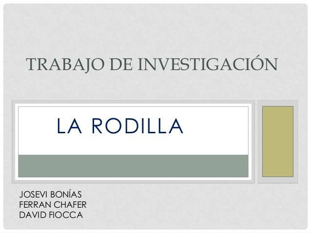TRABAJO DE INVESTIGACIÓN       LA RODILLAJOSEVI BONÍASFERRAN CHAFERDAVID FIOCCA