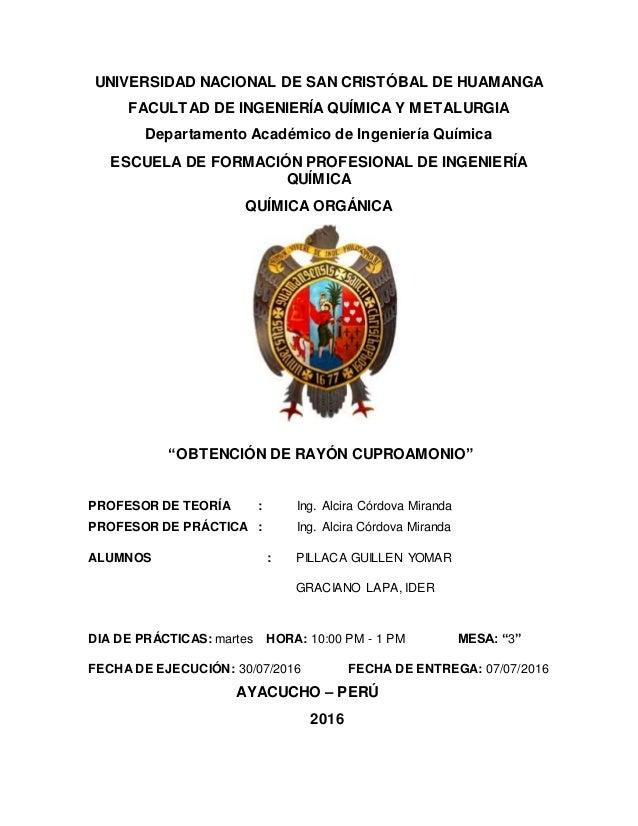 UNIVERSIDAD NACIONAL DE SAN CRISTÓBAL DE HUAMANGA FACULTAD DE INGENIERÍA QUÍMICA Y METALURGIA Departamento Académico de In...