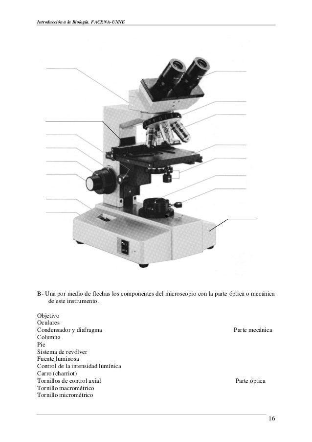 Trabajo de laboratorio de biologia i