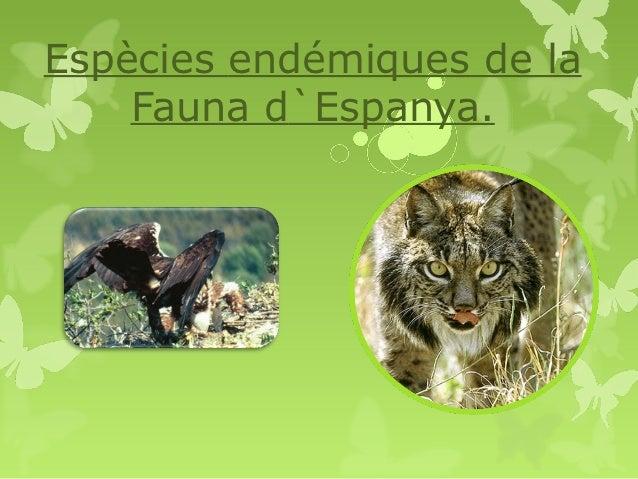Espècies endémiques de la    Fauna d`Espanya.
