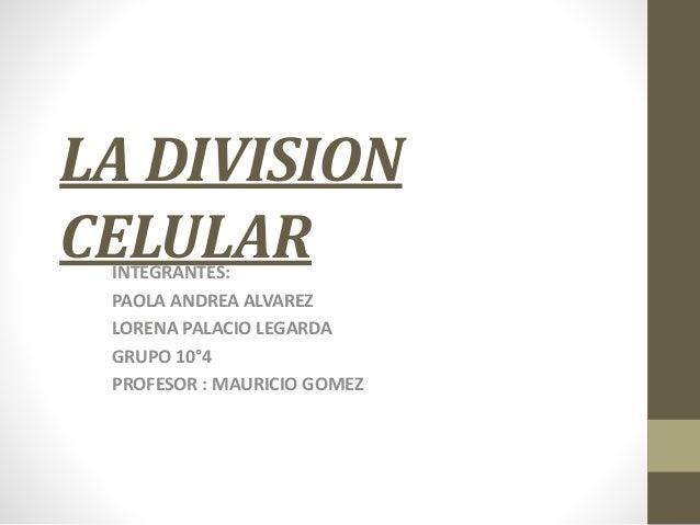 LA DIVISION CELULARINTEGRANTES: PAOLA ANDREA ALVAREZ LORENA PALACIO LEGARDA GRUPO 10°4 PROFESOR : MAURICIO GOMEZ