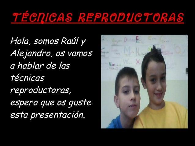 TÉCNICAS REPRODUCTORASHola, somos Raúl yAlejandro, os vamosa hablar de lastécnicasreproductoras,espero que os gusteesta pr...