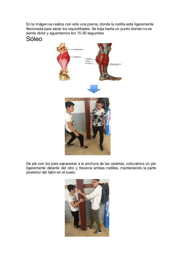 Increíble Músculos De Los Pies Bosquejo - Imágenes de Anatomía ...
