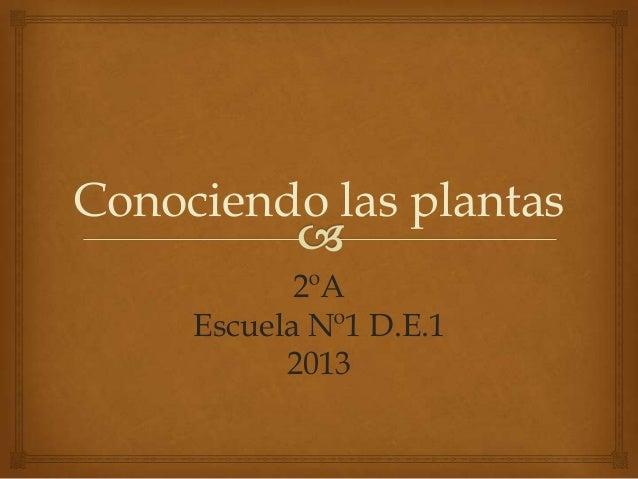 Conociendo las plantas2ºAEscuela Nº1 D.E.12013