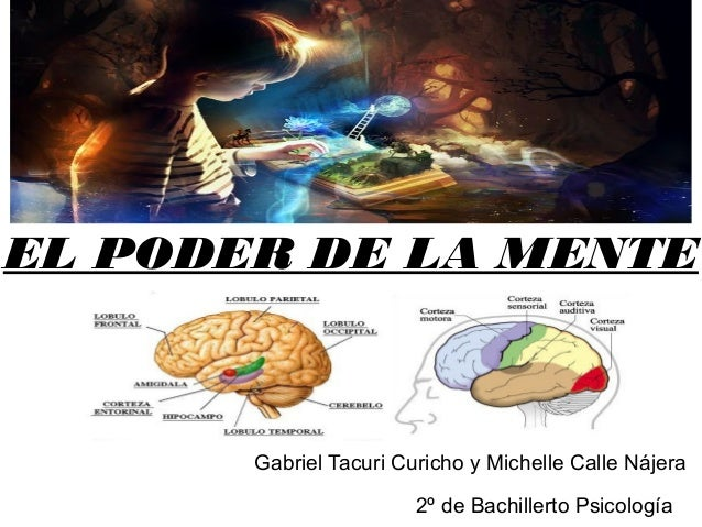 EL PODER DE LA MENTE Gabriel Tacuri Curicho y Michelle Calle Nájera 2º de Bachillerto Psicología