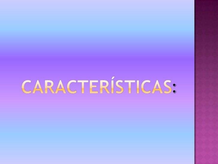 Características:<br />