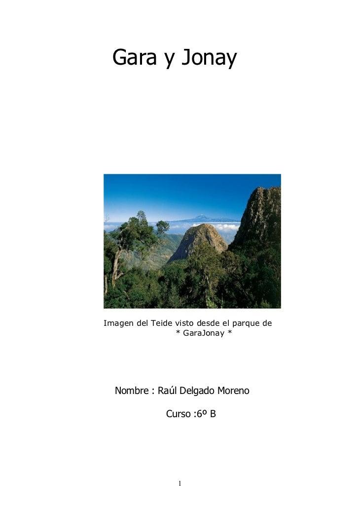 Gara y JonayImagen del Teide visto desde el parque de                 * GaraJonay *  Nombre : Raúl Delgado Moreno         ...
