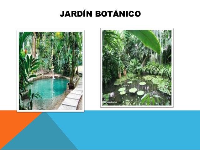Trabajo de turismo 1 wilsin amador for Jardin botanico numero telefonico