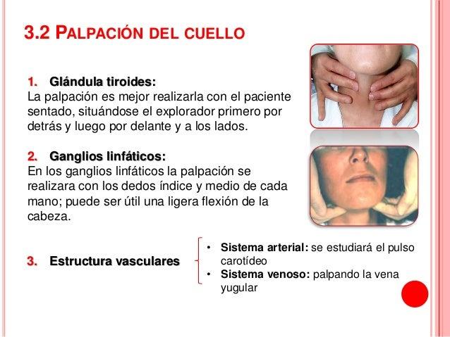 Los preparados para el tratamiento spondileza sheynogo del departamento de la columna vertebral