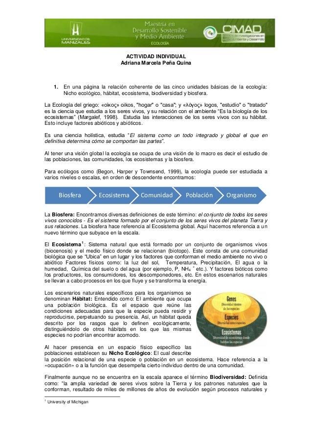 ACTIVIDAD INDIVIDUAL Adriana Marcela Peña Quina  1. En una página la relación coherente de las cinco unidades básicas de l...