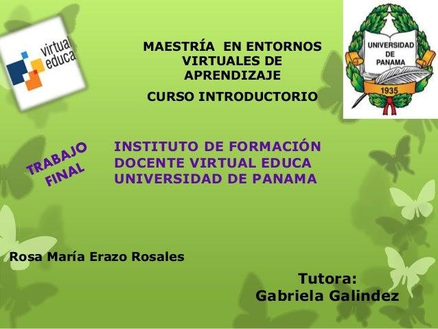 MAESTRÍA EN ENTORNOS  VIRTUALES DE  APRENDIZAJE  CURSO INTRODUCTORIO  INSTITUTO DE FORMACIÓN  DOCENTE VIRTUAL EDUCA  UNIVE...