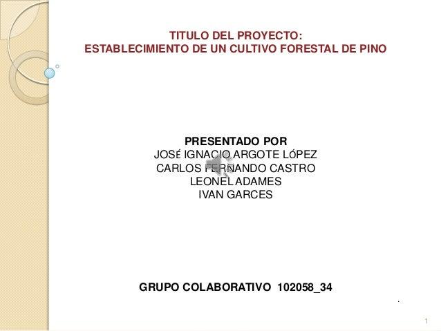 TITULO DEL PROYECTO:ESTABLECIMIENTO DE UN CULTIVO FORESTAL DE PINO               PRESENTADO POR          JOSÉ IGNACIO ARGO...