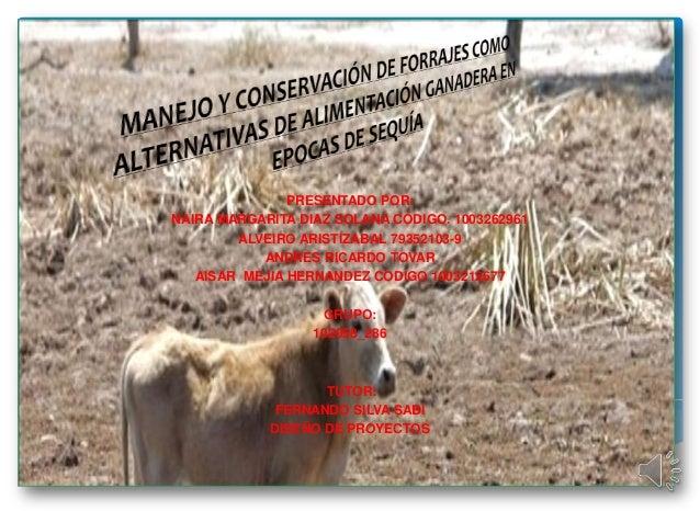 PRESENTADO POR:NAIRA MARGARITA DIAZ SOLANA CÓDIGO. 1003262961        ALVEIRO ARISTIZABAL 79352103-9           ANDRES RICAR...