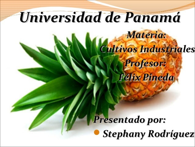 Universidad de PanamáUniversidad de Panamá Materia:Materia: Cultivos IndustrialesCultivos Industriales Profesor:Profesor: ...