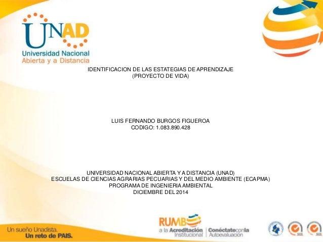IDENTIFICACION DE LAS ESTATEGIAS DE APRENDIZAJE  (PROYECTO DE VIDA)  LUIS FERNANDO BURGOS FIGUEROA  CODIGO: 1.083.890.428 ...