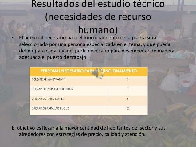 Resultados del estudio técnico(necesidades de recursohumano)• El personal necesario para el funcionamiento de la planta se...
