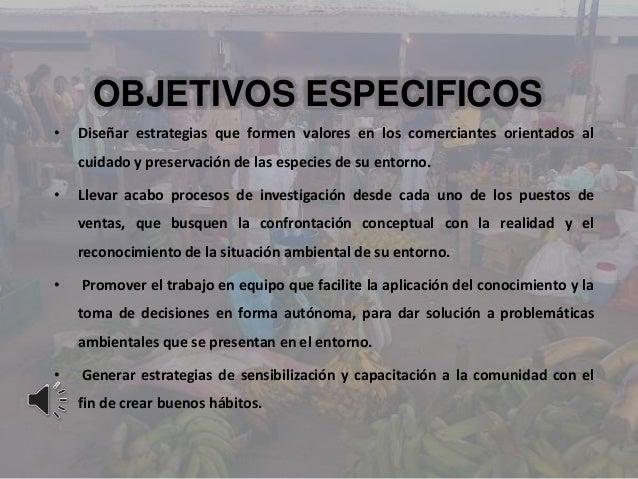 OBJETIVOS ESPECIFICOS• Diseñar estrategias que formen valores en los comerciantes orientados alcuidado y preservación de l...