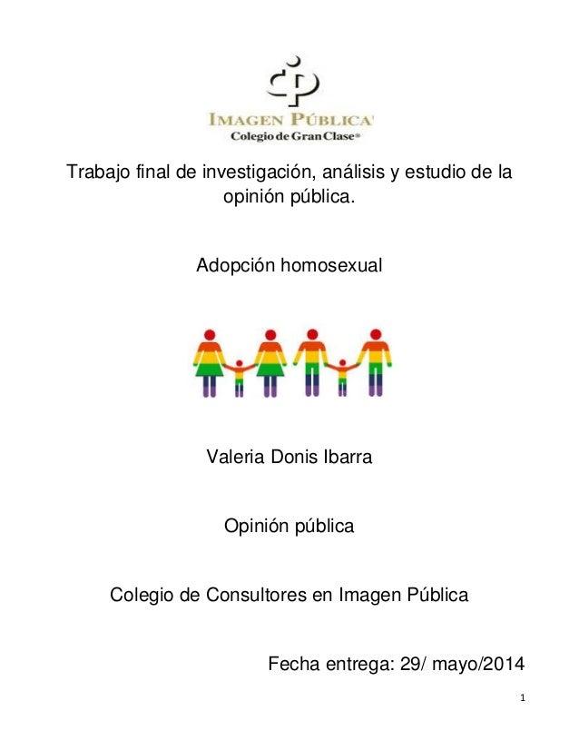 Debate sobre la adopcion homosexual a favor