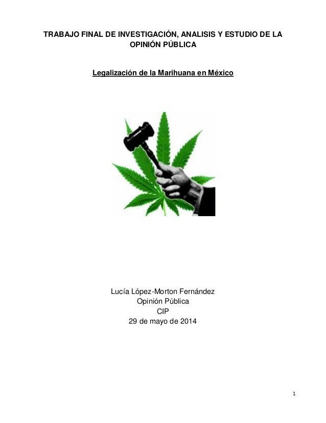 1 TRABAJO FINAL DE INVESTIGACIÓN, ANALISIS Y ESTUDIO DE LA OPINIÓN PÚBLICA Legalización de la Marihuana en México Lucía Ló...