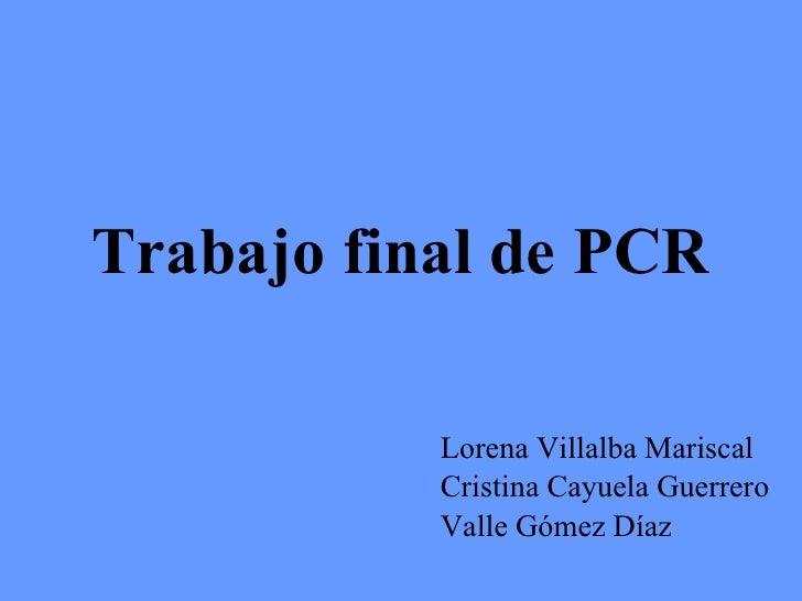 Trabajo final de PCR Lorena Villalba Mariscal Cristina Cayuela Guerrero Valle Gómez Díaz