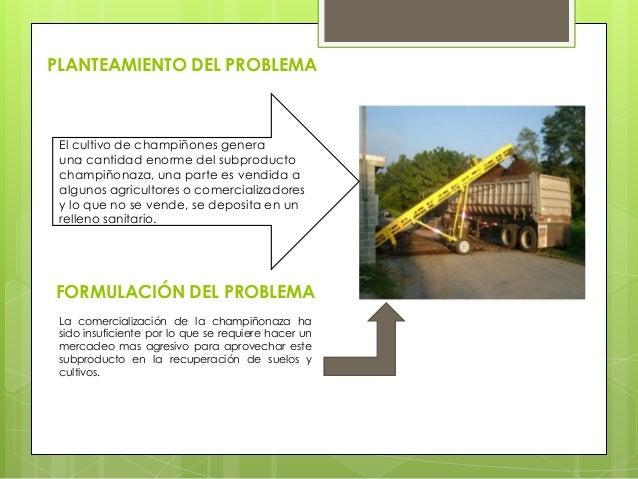 PRODUCCIÓN Y COMERCIALIZACIÓN DE ABONOS ORGÁNICOS Slide 2