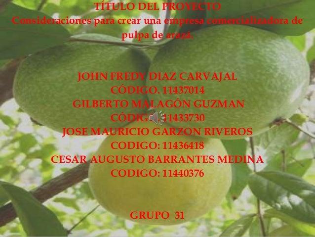 TÍTULO DEL PROYECTOConsideraciones para crear una empresa comercializadora de                      pulpa de arazá.        ...