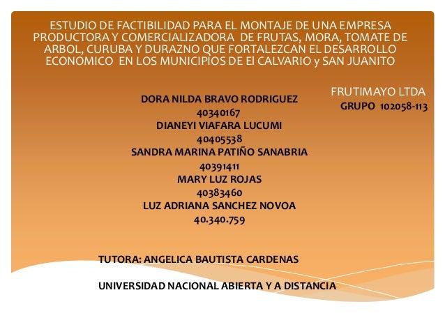 ESTUDIO DE FACTIBILIDAD PARA EL MONTAJE DE UNA EMPRESAPRODUCTORA Y COMERCIALIZADORA DE FRUTAS, MORA, TOMATE DE  ARBOL, CUR...