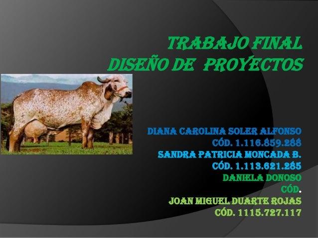 TRABAJO FINAL DISEÑO DE PROYECTOS  Diana Carolina Soler Alfonso Cód. 1.116.859.288 Sandra Patricia Moncada B. Cód. 1.113.6...