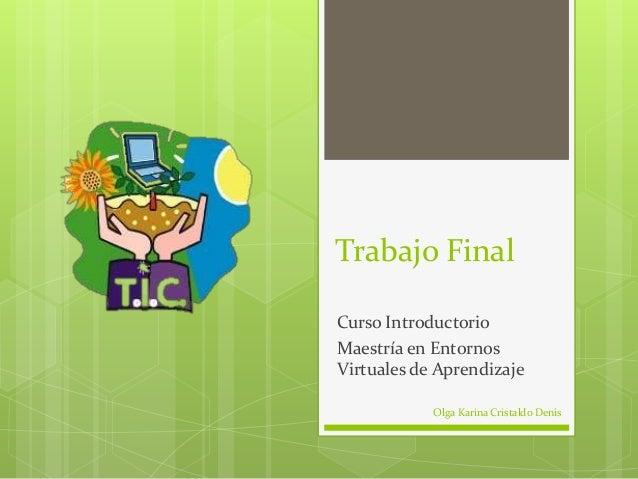 Trabajo FinalCurso IntroductorioMaestría en EntornosVirtuales de Aprendizaje            Olga Karina Cristaldo Denis