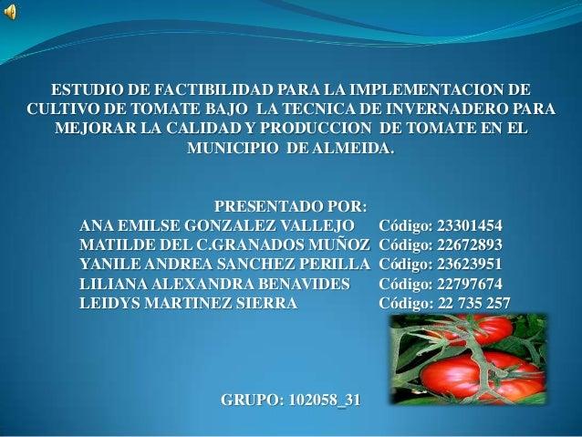 ESTUDIO DE FACTIBILIDAD PARA LA IMPLEMENTACION DECULTIVO DE TOMATE BAJO LA TECNICA DE INVERNADERO PARAMEJORAR LA CALIDAD Y...