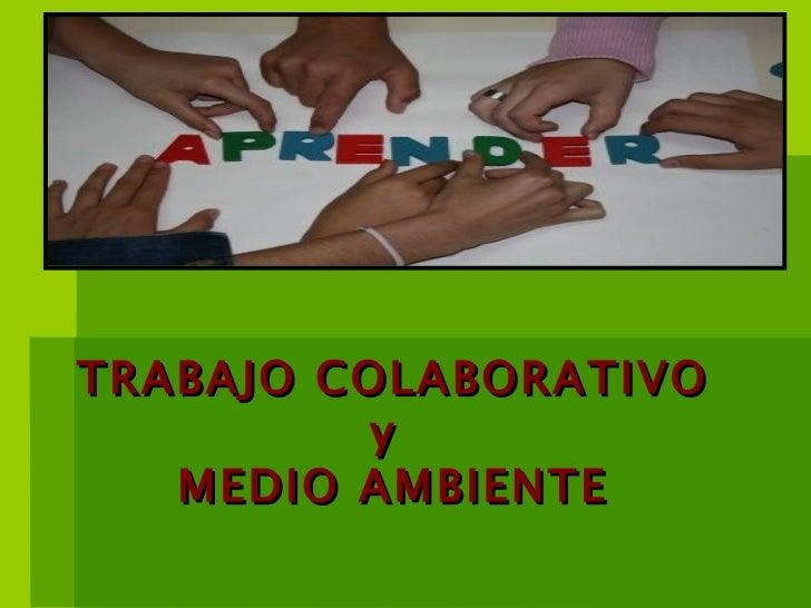 TRABAJO COLABORATIVO y  MEDIO AMBIENTE