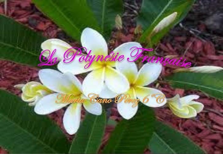 GÉOGRAPHIE La Polynésie est lune des divisions classiques de lOcéanie, formée par un vastetriangle dîles du Pacifique cent...