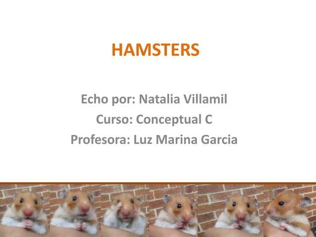 HAMSTERS  Echo por: Natalia Villamil    Curso: Conceptual CProfesora: Luz Marina Garcia