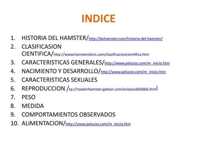 INDICE1. HISTORIA DEL HAMSTER/http://behamster.com/historia-del-hamster/2. CLASIFICASION    CIENTIFICA/http://www.hamsterd...