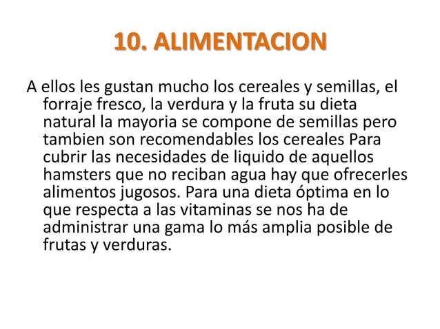 10. ALIMENTACIONA ellos les gustan mucho los cereales y semillas, el  forraje fresco, la verdura y la fruta su dieta  natu...