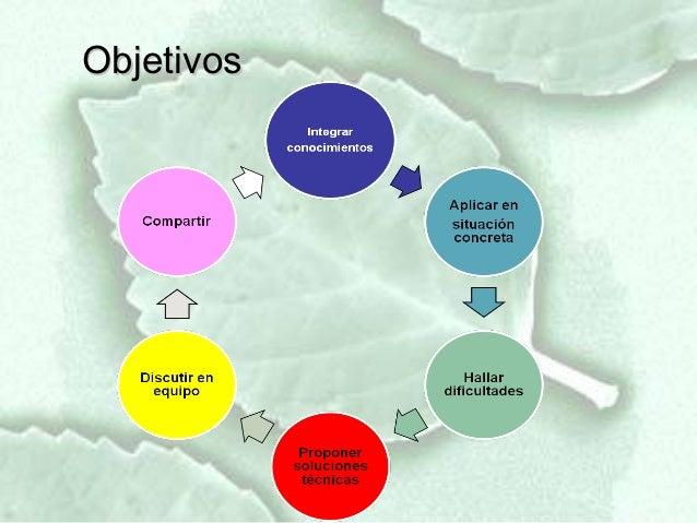Trabajo integrador zoología agrícola Slide 3