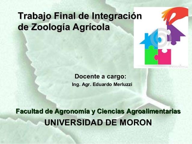 Trabajo Final de Integraciónde Zoología Agrícola                 Docente a cargo:                Ing. Agr. Eduardo Merluzz...