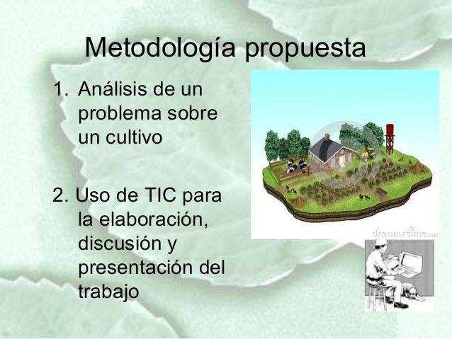 Metodología propuesta1. Análisis de un   problema sobre   un cultivo2. Uso de TIC para   la elaboración,   discusión y   p...