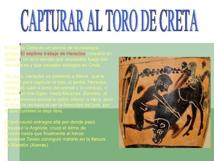 CAPTURAR AL TORO DE CRETA Eltoro de Cretaes un animal de lamitología   griega.   Elséptimo trabajodeHeracles consis...