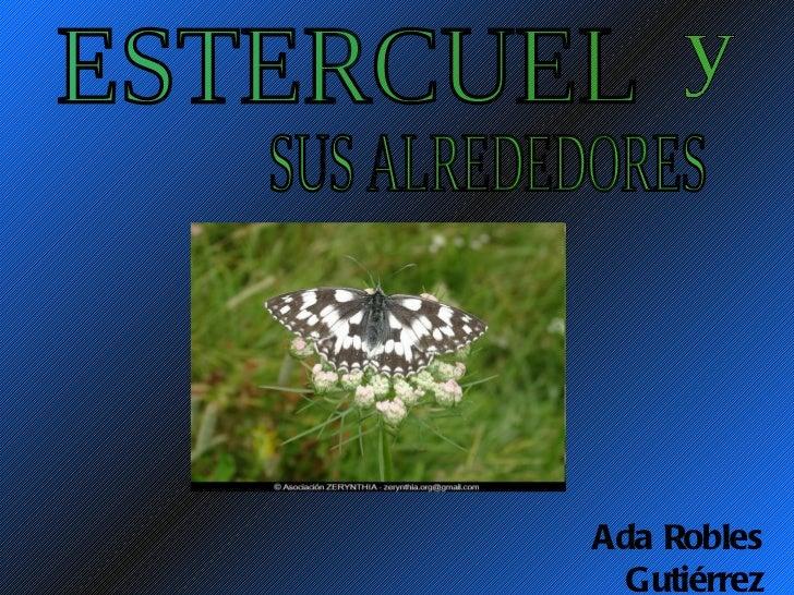 ESTERCUEL  SUS ALREDEDORES y Ada Robles Gutiérrez